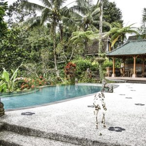 Murni's Villas, Bali, Indonesien Image