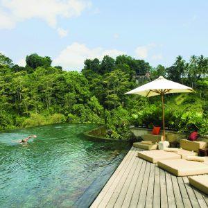 Ubud Hanging Gardens (Bali), Indonesia Image